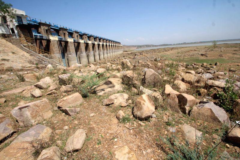 A view of Himayat Sagar reservoir in Hyderabad on May 10, 2016.