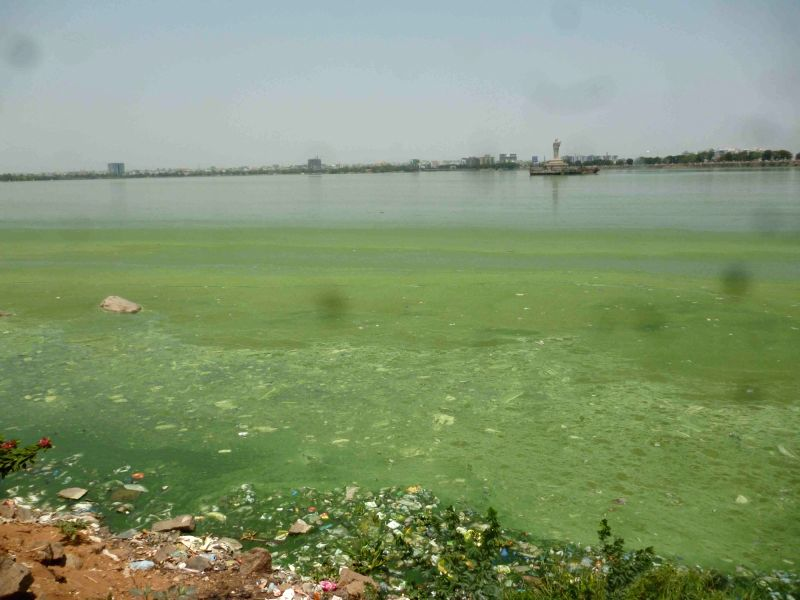 A view of polluted Hussain Sagar lake in Hyderabad on April 21, 2017.