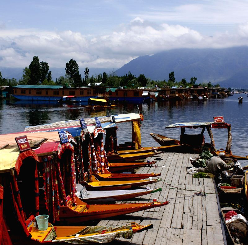 A view of shikaras on the banks of Dal Lake after rains in Srinagar on May 13, 2014.