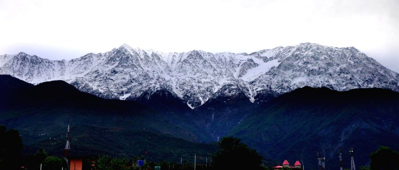 A view of snow-clad Dhauladhar range after fresh snowfalls from Palampur.