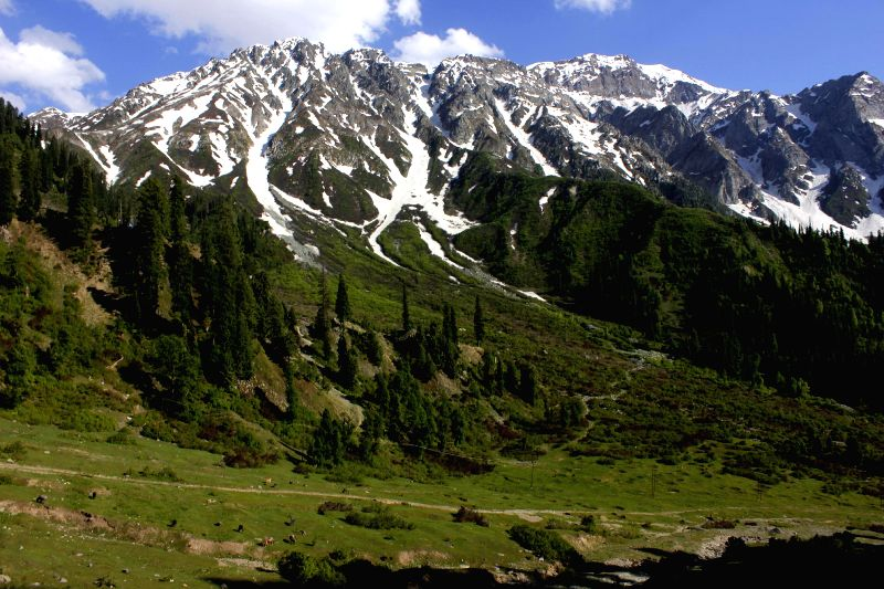 : A view of snow clad mountain in Sadhna top a highest 11200 feets of boder area of Tangdar in Kupwara district in Kashmir valley on June 13, 2014. (Photo: IANS).