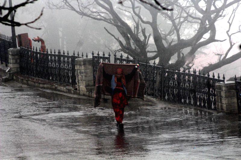 A woman walks down a Shimla road during rains on Nov 27, 2015.