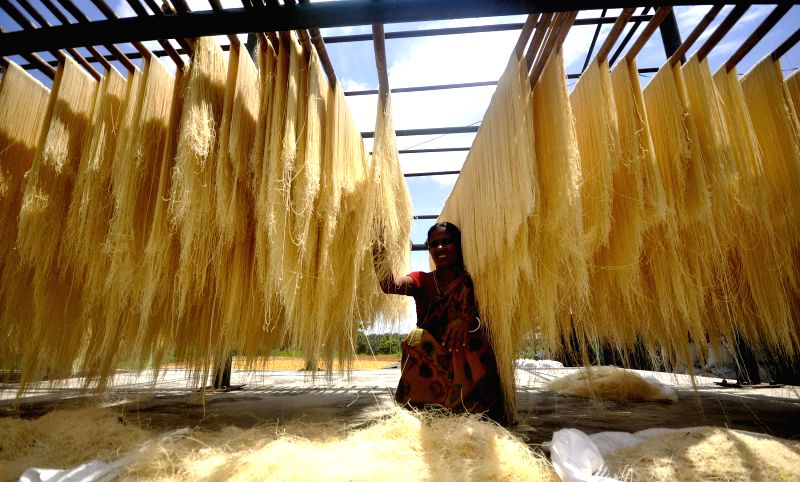 A worker hangs strands of vermicelli to dry in sun at a factory during the holy month of Ramadan in Agartala on July 17, 2014.