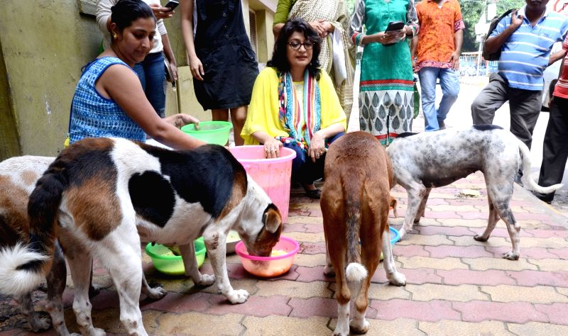 Actor-politician and animal rights activist Debashree Roy feeds stray dogs in Kolkata on Aug 8, 2016. - Debashree Roy