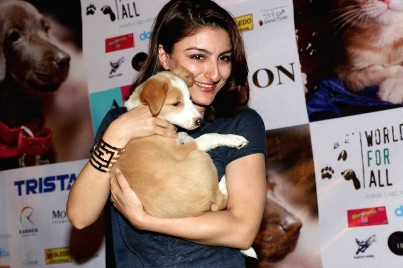 Actress  Soha Ali Khan during a animal adoption drive in Mumbaion Nov 23,2015.