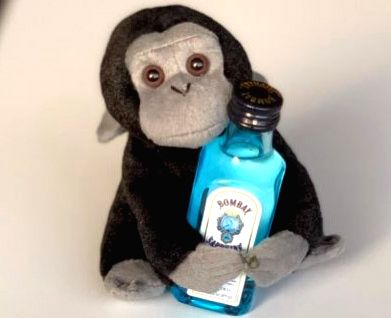Alcoholic monkey becomes Elon Musk's Twitter picture