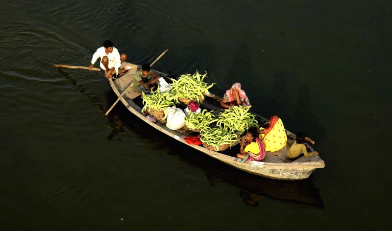 A boatman rows a boat carrying skinny cucumber 'kakri' on Yamuna River near Allahabad.