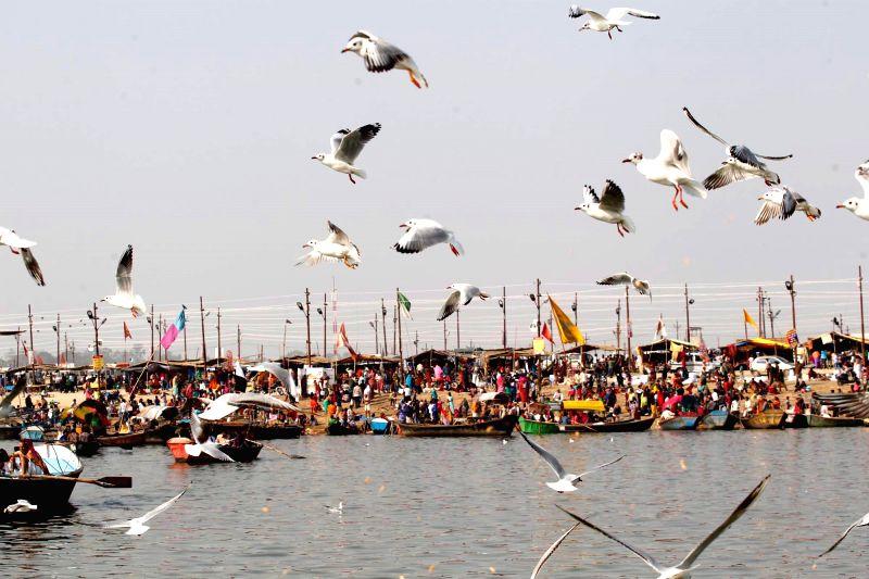 Devotees at Sangam, Allahabad on Feb. 1, 2015.