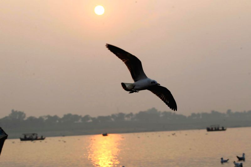 The last sunset of 2014 as seen from Sangam, in Allahabad on Dec 31, 2014.