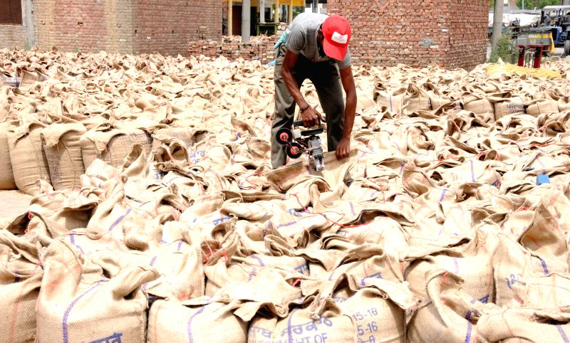 Labourers busy packing wheat in gunny bags at a grain market near Aritsar on April 29, 2015.