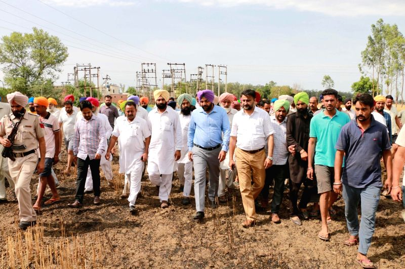 Amritsar MP Gurjit Singh Aujla meets the farmer during his visit to the fields where standing wheat crop was burnt to ashes following a spark from overhead high tension wire in Amritsar on ... - Gurjit Singh Aujla