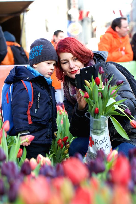 People take photos of tulips during the Netherlands' National Tulip Day in Amsterdam, capital of the Netherlands, on Jan. 17, 2015. The Netherlands' National ...