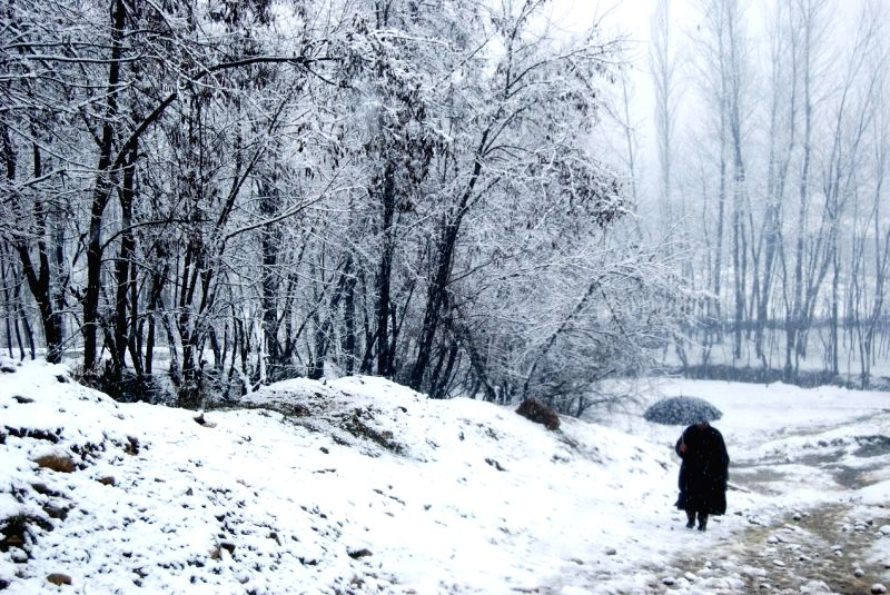 A man walks during snowfalls in Anantnag of Jammu and Kashmir on March 1, 2015.