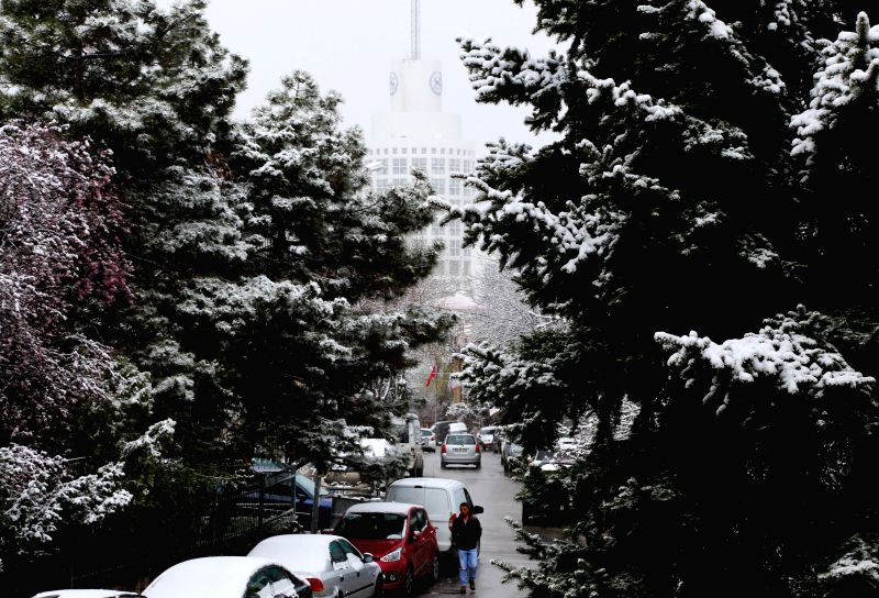 Trees are covered with snow in Ankara April 10, 2015. Snowfall hit parts of Turkey on Friday.