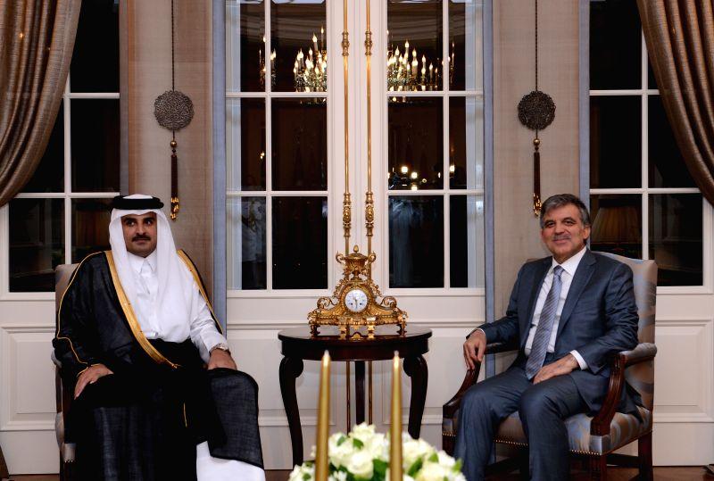 Turkish Presidnet Abdullah Gul (R) hold talks with visiting Qatar's Emir Sheikh Tamim bin Hamad bin Khalifa al-Thani in Ankara, Turkey, July 15, 2014.(Xinhua/Turkish .