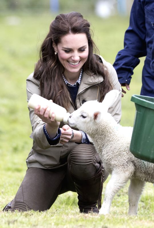 ARLINGHAM, May 3, 2017 - Britain's Duchess of Cambridge Catherine feeds a lamb during a visit to a farm run by the Farms for City Children charity in Arlingham, near Gloucester, Britain on May 3, ...