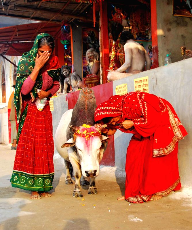 Ascetics at Gangasagar island  a day ahead of Makar Sankranti some 160 kms south of Kolkata on Jan 13, 2015.