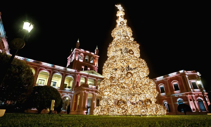 Image taken on Dec. 23, 2014 shows a Christmas tree in front of the Presidential Palace in Asuncion, capital of Paraguay.