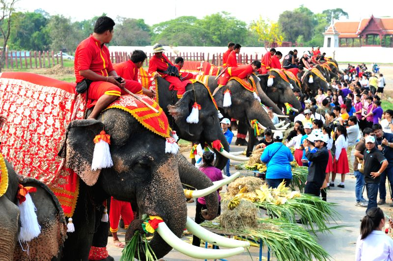 Thai people feed elephants with various kinds of fruits and vegetables during an elephant buffet on National Elephant Day in the ancient historical city of ...