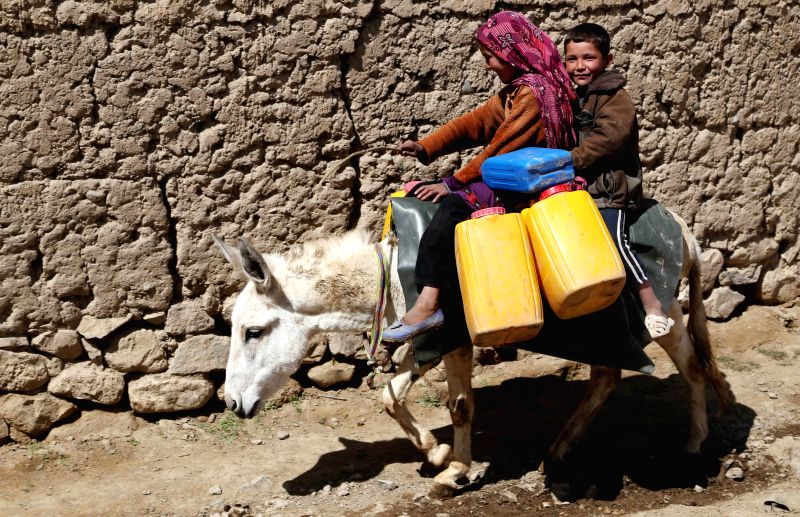 Afghan children ride a donkey while carrying empty barrels to get water in Bamyan province in central Afghanistan on April 22, 2014.