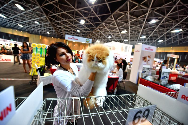 Judge holds a cat out of a cage during the 2015 Bangkok International Cat Competition in Bangkok, Thailand, on March 7, 2015.