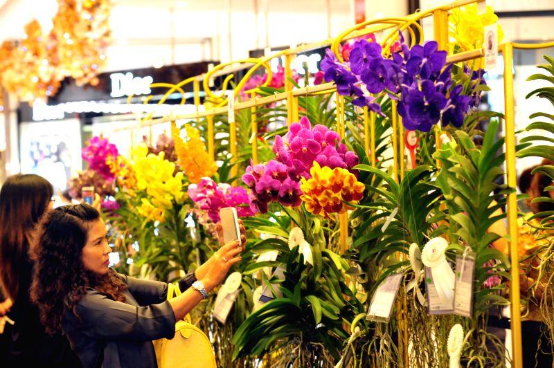 Visitors watch orchids on the 8th Siam Paragon Bangkok Royal Orchid Paradise in Bangkok, Thailand, Nov. 27, 2014.
