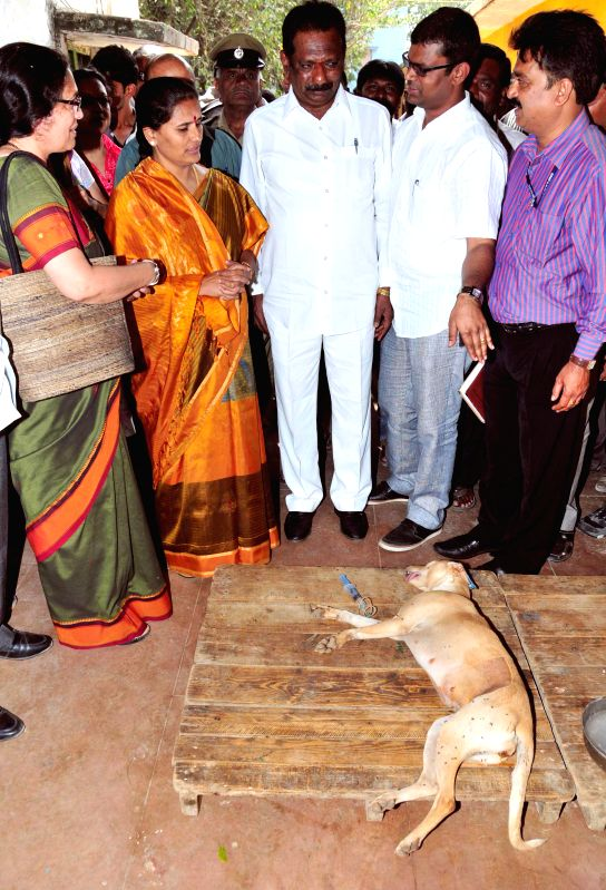 Bengaluru Mayor Shantakumari and Deputy Mayor Ranganna inspect a veterinary hospital in Bengaluru, on Dec 10, 2014.