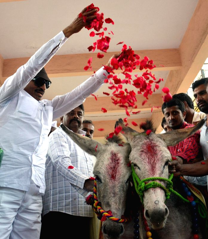 Kannada Chalavali Vatal Paksha chief Vatal Nagaraj felicitates donkeys during `Rajyotsava` - a felicitation ceremony organised at Kemepegowda Bus stand, in Bengaluru on Jan. 6, 2014.