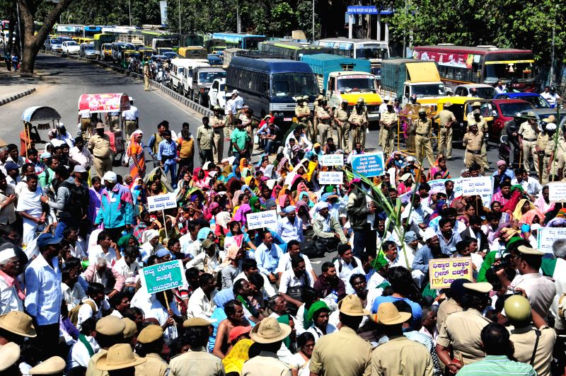 Members of State Sugarcane Growers Association stage a rally to press for their demands  in Bengaluru, on Feb 9, 2015.