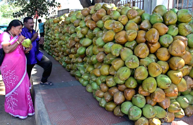 People sip tender coconut water to beat the beat in Bengaluru on Feb 24, 2015.