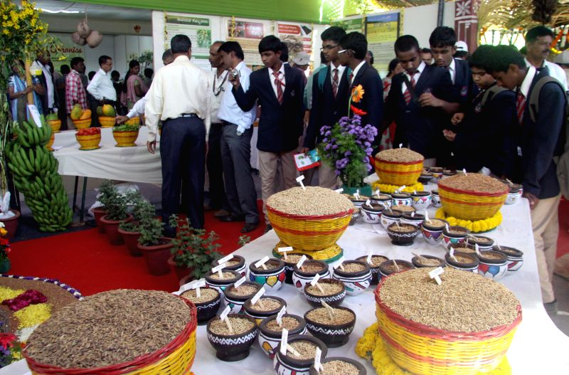 Visitors at ​ the valedictory function of  Krishi Mela - 2014 organised by University of Agricultural Sciences at Gandhi Krishi Vignayana Kendra (GKVK), in Bengaluru on Nov. 21, 2014.