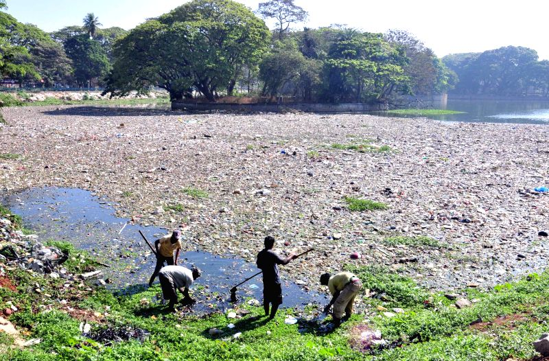 Workers busy cleaning Ulsoor Lake, in Bengaluru on March 11, 2015.