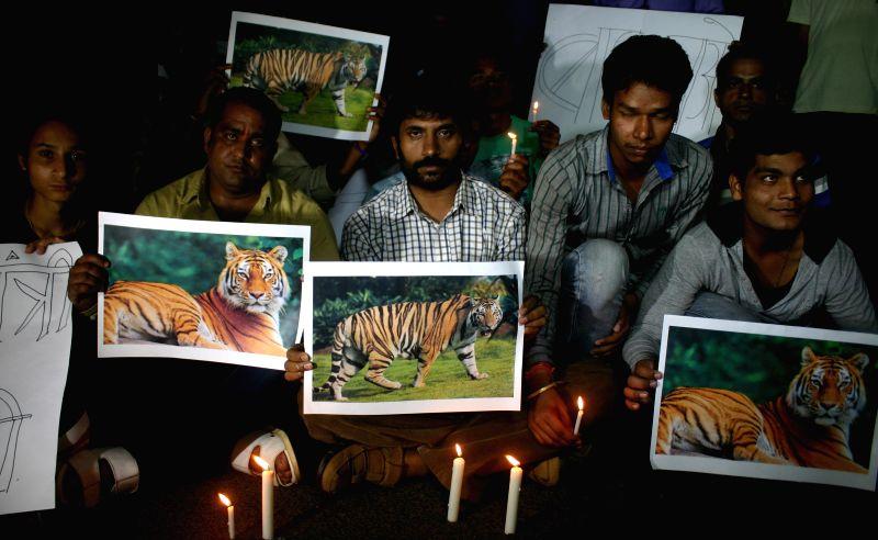 Wildlife activists stage a demonstration outside the residence of Forest Minister Gaurishankar Shejwar to protest against killing of a tiger cub in Bandhavgarh Tiger reserve in Bhopal, on ... - Gaurishankar Shejwar