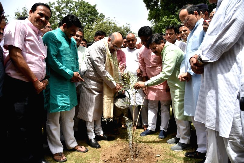 BJP chief Amit Shah plants a sapling on World Environment Day in New Delhi on June 5, 2017. - Amit Shah