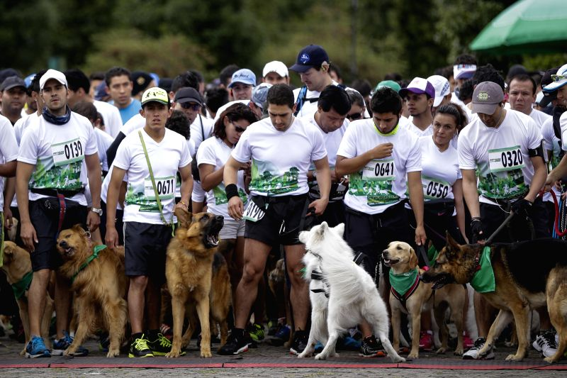 "Residents prepare to start with their dogs during the ""Pet Run"" race at Simon Bolivar park, in the city of Bogota, Colombia, on May 17, 2015.  ..."