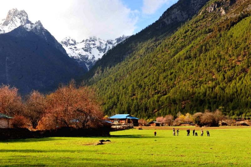 Photo taken on March 28, 2015 shows the picturesque spring scenery in Bomi County, southwest China's Tibet Autonomous Region.