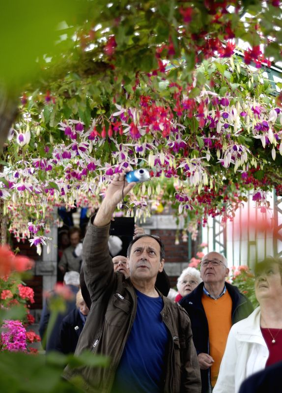 Photo: Visitors enjoy flowers at the Royal Garden in Brussels, capital of Belgium, May 8, 2013. The Belgian royal family opens its greenhouses in the royal garden ...