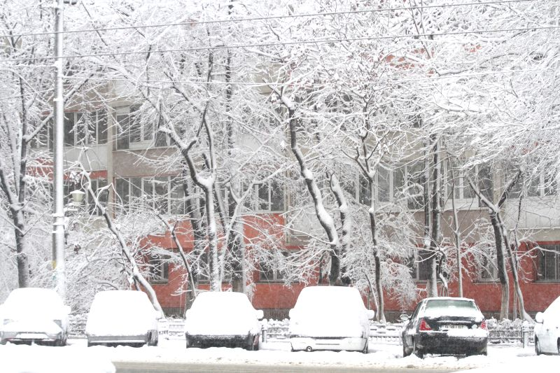 Photo taken on Dec. 29, 2014 shows cars covered by snow in Bucharest, capital of Romania. Romania's National Meteorology Administration on Monday issued a Code ...