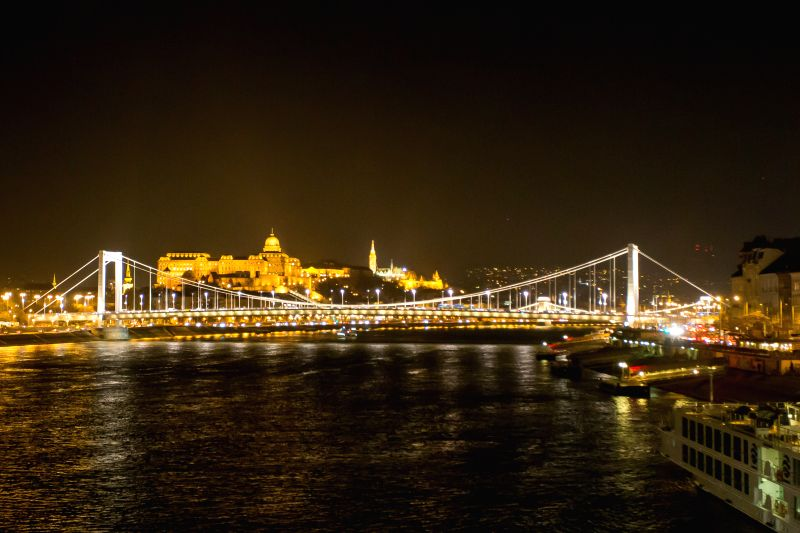 Budapest (Hungary): Photo taken on Nov. 20, 2014, shows the Elisabeth Bridge in Budapest, Hungary. This year marks the 50th anniversary of the new Elisabeth Bridge which was handed over on Nov. 21, ..