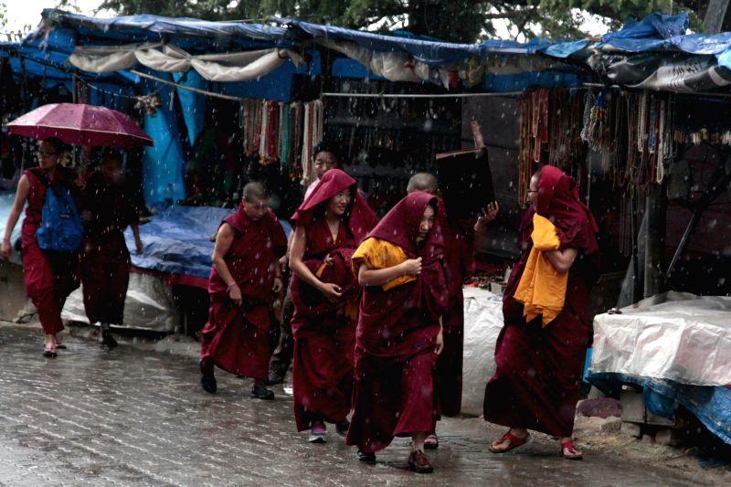 Buddhist monks run for shelter as rains lash Dharamsala on May 10, 2017.