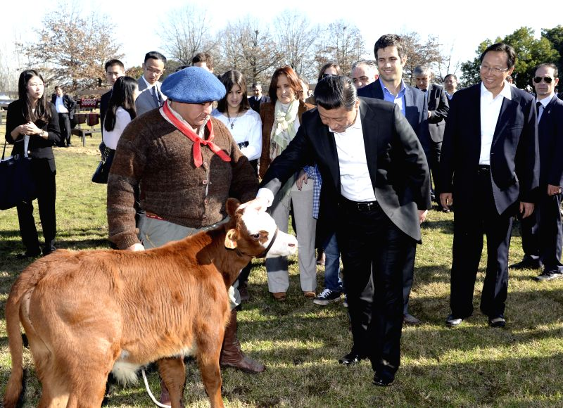 Chinese President Xi Jinping visits the Republic Farm, some 70 km away from Buenos Aires, Argentina, July 19, 2014.