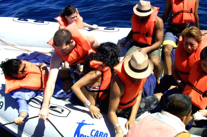 Image provided by Mexico's Federal Attorney for Environmental Protection on March 12, 2015 shows tourists aboard a boat that collided with a whale in the ...