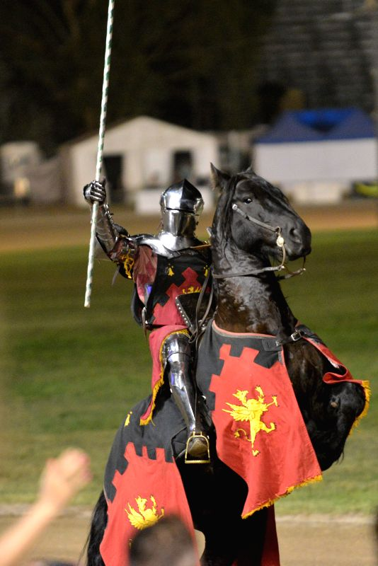 A performer salutes on a joust show during the Royal Canberra Show in Canberra, Australia, Feb. 28, 2015. The Royal Canberra Show, which is an annual agricultural ...