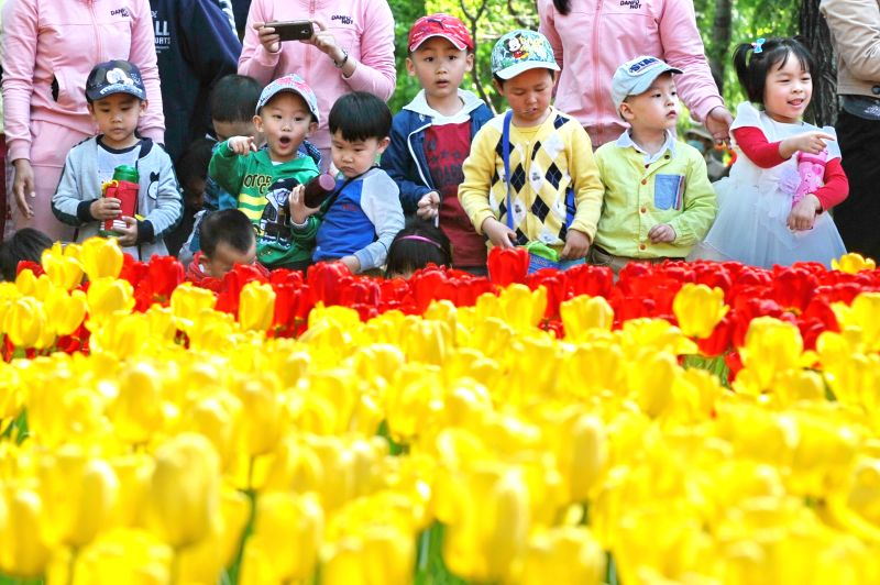 Children view tulip flowers at a park in Changchun, capital of northeast China's Jilin Province, May 13, 2014.