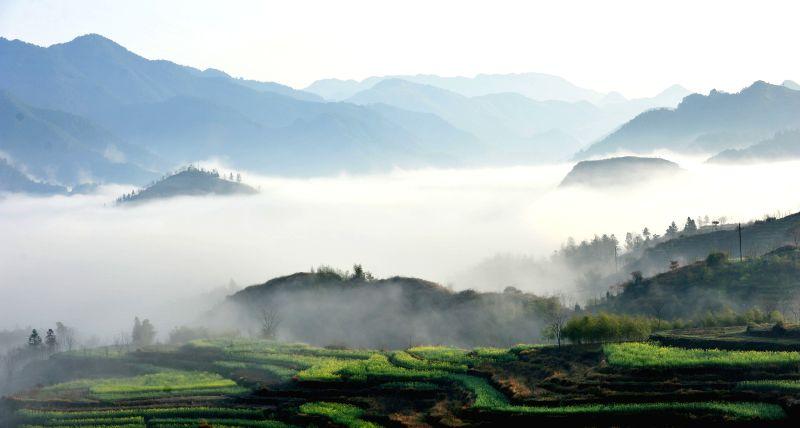 Photo taken on March 24, 2015 shows the morning scenery of Jiapeng Town of Jixi County, east China's Anhui Province. (Xinhua/Xu Zhenhua)