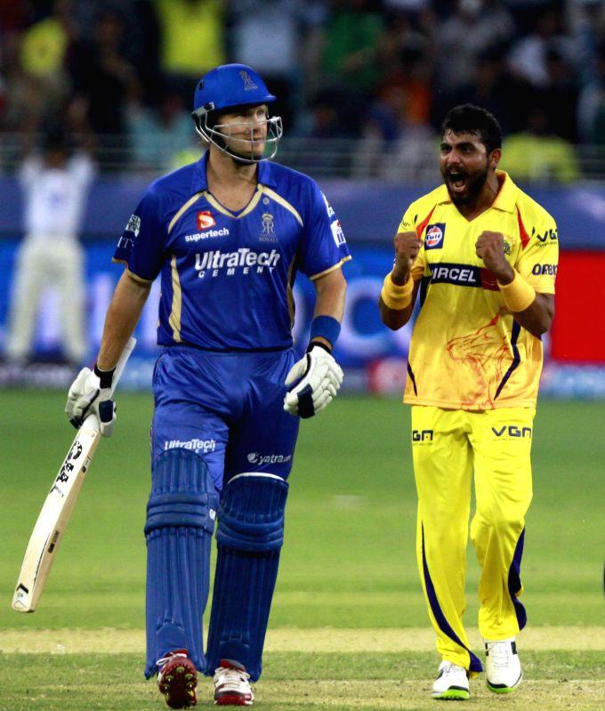 Chennai Super Kings player Ravindra Jadeja celebrates fall of Shane Watson's wicket during the 10th match of IPL 2014 between Rajasthan Royals and Chennai Super Kings, played at Dubai International .. - Ravindra Jadeja