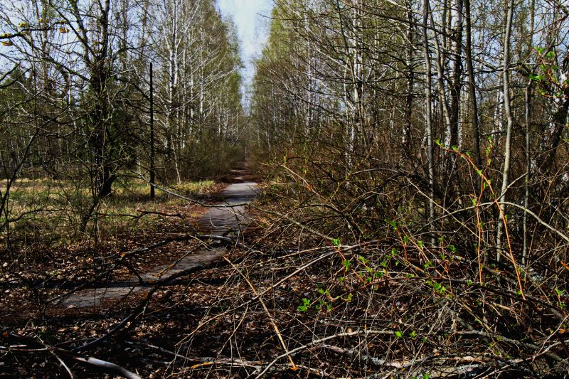 CHERNOBYL, April 8, 2017 - Photo taken on April 5, 2017 shows a sight of Chernobyl, Ukraine. The Ukrainian government has recently declared the territory around Chernobyl nuclear power plant as a ...