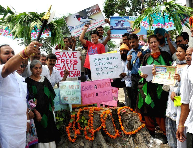 Chief Parliamentary Secretary (Health) Navjot Kaur Sidhu and BJP leader Laxmi Kanta Chawla during a protest against deforestation in Amritsar on July 14, 2014. - Navjot Kaur Sidhu
