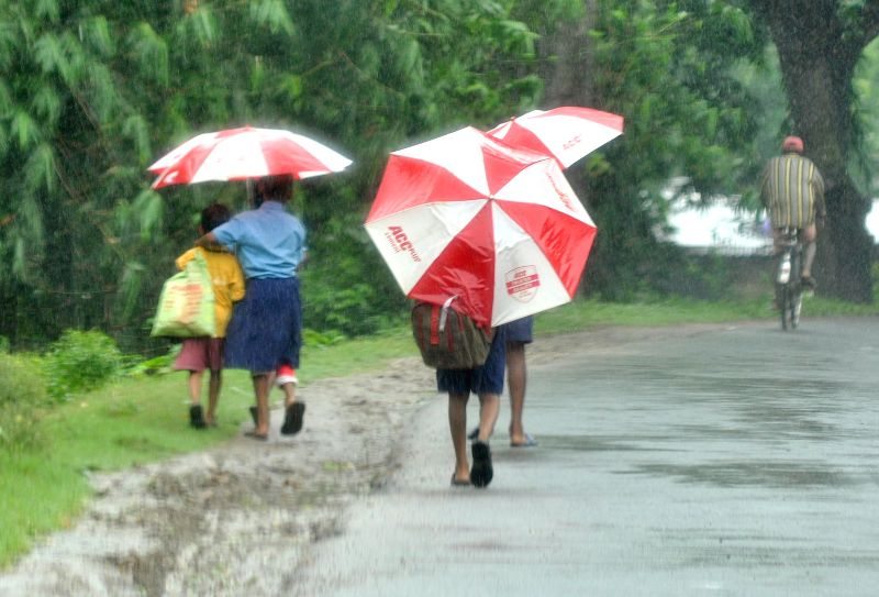 Children on their way to school during rains at Hooghly in West Bengal on Aug 21, 2014.