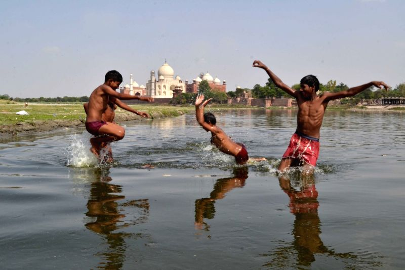 Children play in Yamuna river on a hot day in Agra, on May 13, 2016.
